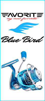 Favorite Blue Bird reel